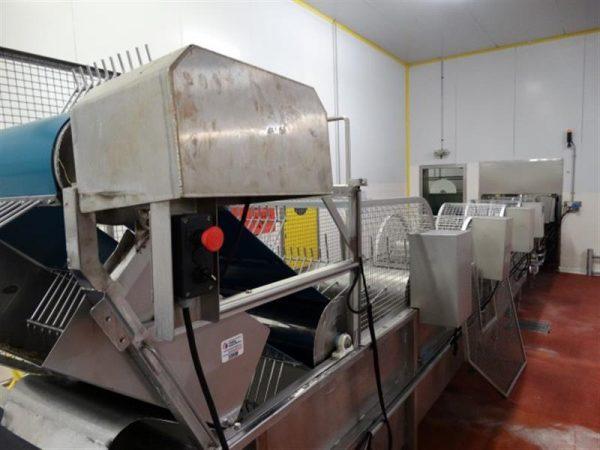 1 lavadora lineal con removedores en acero
