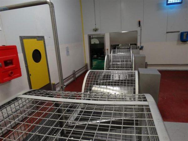 2 lavadora lineal con removedores en acero