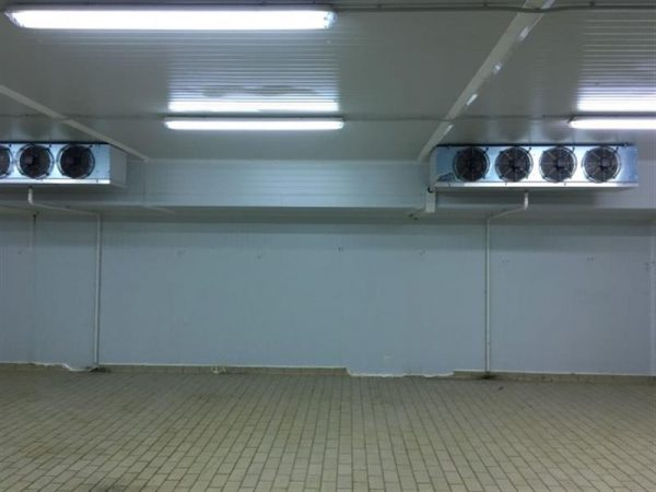 5 camara frigorifica l 10.20 m a 8.80 m alto 2.94 m
